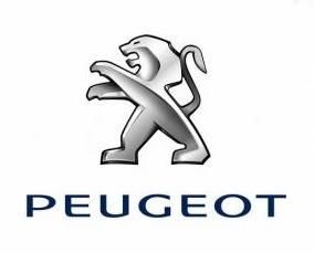 Pièces détachées auto Peugeot