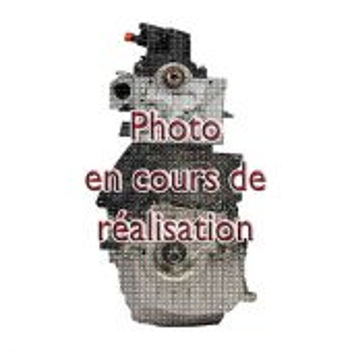 Moteur Complet Renault Megane Scenic 1.9 Dci 130 cv F9Q-804